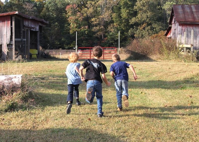 boys-dairy-farm